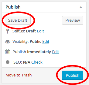 Publish Box from a WordPress Edit Post or Page